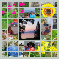 Photo Collage Summer In Maine