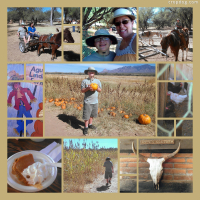 Photo Collage Pumpkin Farm