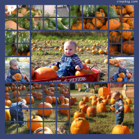 Photo Collage Pumpkin Patch