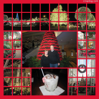 Photo Collage Nashville Gaylord Opryland
