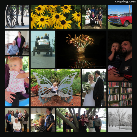 Photo Collage A Look Back At 2013