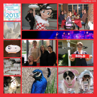 Photo Collage MMDT #24: A Year In Review