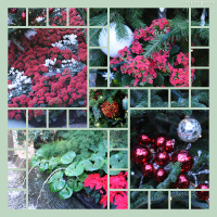 Photo Collage Longwood Gardens Holiday