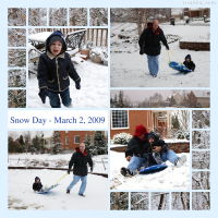 Photo Collage Snow Buds