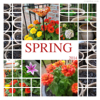 Photo Collage Spring Planting