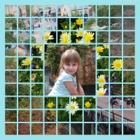 Photo Collage Surrounded By Daisy