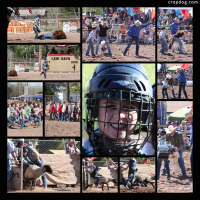 Photo Collage 2015 Lehi Days With The Panzicas