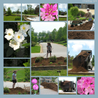 Photo Collage Spring Chores