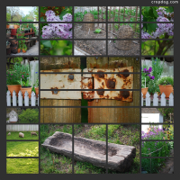 Photo Collage Colonial Garden