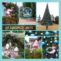 Photo Collage Sea World